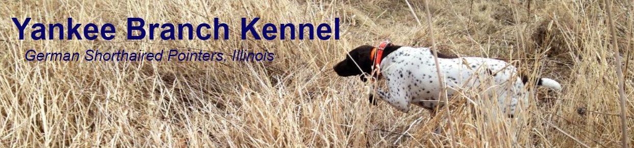 Yankee Branch Kennel